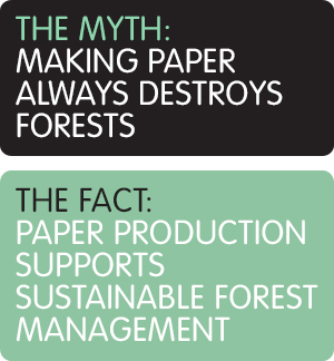 Making Paper always destroys forests